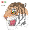 HTML5 tiger